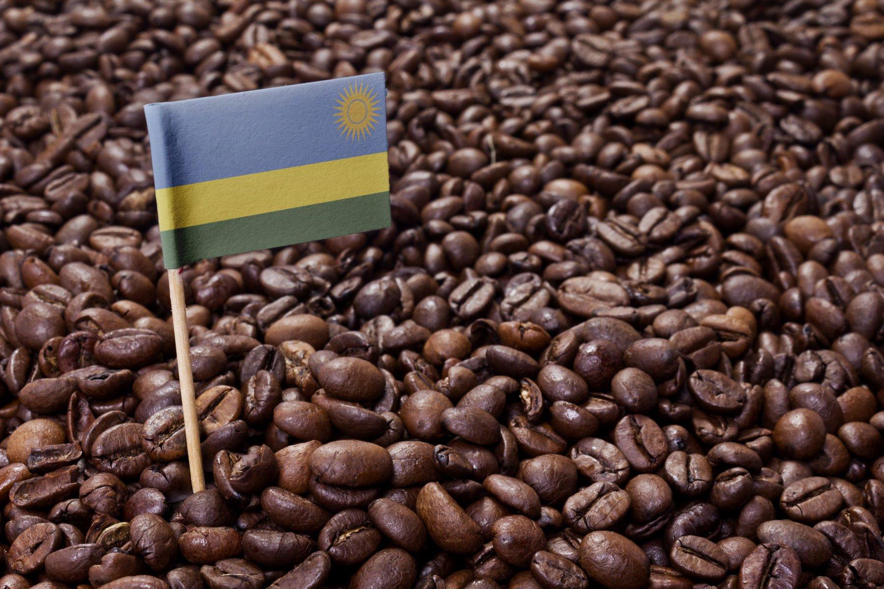 Rwanda Tours: More Than Wildlife and Gorilla Safaris
